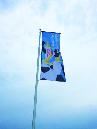 Fahne Aspern Nord